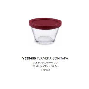 V335490